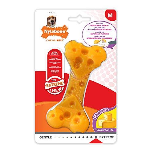 Nylabone 984104EU Dura Power Chew, Kauknochen mit Geschmackslöchern, Käsegeschmack, für mittelgroße Hunde (bis 16 kg), M - Hunde Für Knochen Mittelgroße Hund