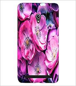 PrintDhaba Flowers D-2837 Back Case Cover for ASUS ZENFONE 6 A601CG (Multi-Coloured)