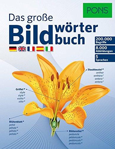 PONS Das Große Bildwörterbuch: 200.000 Begriffe in 5 Sprachen - Deutsch, Englisch, Französisch, Spanisch, Italienisch (Spanisch Englisch Wörterbuch)