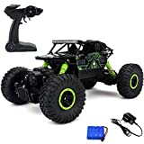 Best Remote Control Trucks - HB Mousepotato Rock Crawler Off Road Race Monster Review