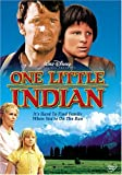 One Little Indian [Import USA Zone 1]