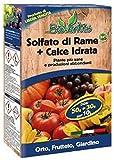 BioVentis Solfato di Rame + Calce idrata