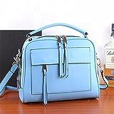 WanJiaMen'Shop Elegante custodia in pelle borsetta borsa donna in pelle spalla singolo sacchetto semplice capacità di grande piacere borsette frange borsa, 28 * 10 * 23cm, azzurro