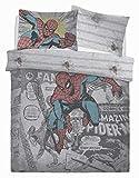 Artistic Fashionista * Parure de lit réversible avec Housse de Couette et taie d'oreiller Motif Disney, Spiderman Comic Group, Double
