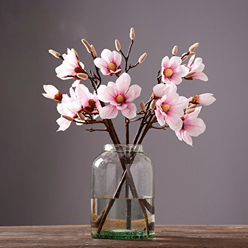 European Transparent Glass Vase Decoration/modern Minimalist American Creative Home Decor/living Room Flower Device-b