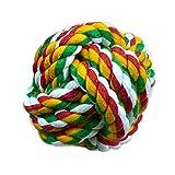 Froomer Ball Boule Coton Corde Tressée à Marche pour Chien