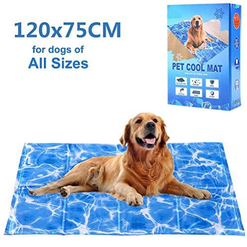 Kühlmatte für Hunde, selbstkühlende Gel-Matte für den Sommer-Schlaf.