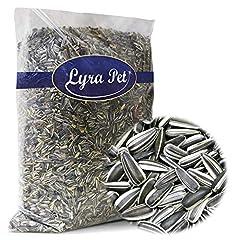 Lyra Pet® 25 kg Sonnenblumenkerne