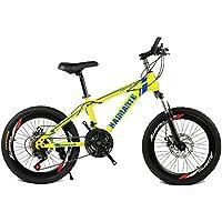 HUALQ Bicicleta 20 Pulgadas Bicicleta de montaña 21 Velocidad 24 Velocidad 27 Velocidad Doble Disco Freno