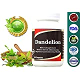 Dandelion - Pure Natural, 500 Mg, 60 Capsules Pack (Pack Of 1)