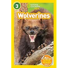 National Geographic Kids Readers: Wolverines (L3) (Readers)