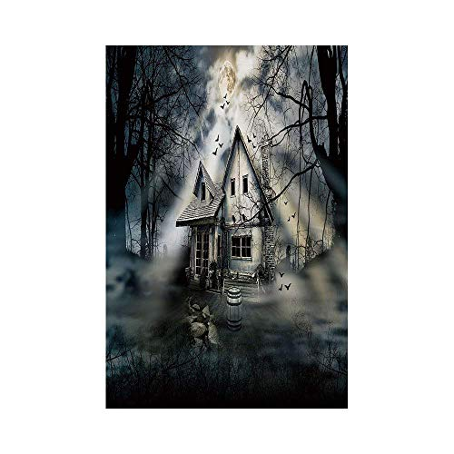 Liumiang Eco-Friendly Manual Custom Garden Flag Demonstration Flag Game Flag,Halloween,Haunted House with Dark Horror Atmosphere Cloudy Mysterious Frightening,Grey White Blackeco d¨¦COR (Horror Halloween Pics)