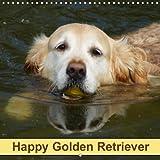 Happy Golden Retriever (Wall Calendar 2018 300 × 300 mm Square): Dogs and Pets (Monthly calendar, 14 pages ) (Calvendo Animals) [Kalender] [Apr 01, 2017] kattobello, k. A.
