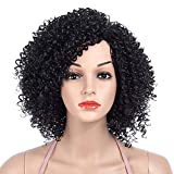 DakTou Peluca Afro Mujer Peluca Rizadas Afro Natural Peluca Disfraz Negra Bob Sintetica Pelo Corta 1B# (36cm)