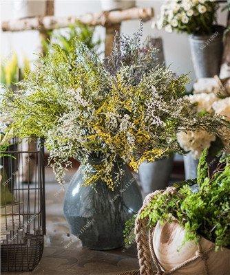 Valentine Grass Seed Rare intérieur Bonsai frais et secs graines de fleurs des plantes ornementales, la croissance naturelle, Quatre saisons de plantation 80 Pc