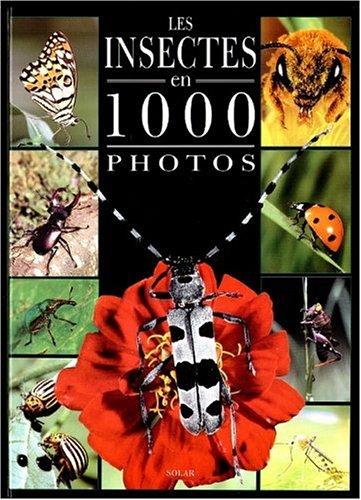 Insectes 1000 photos