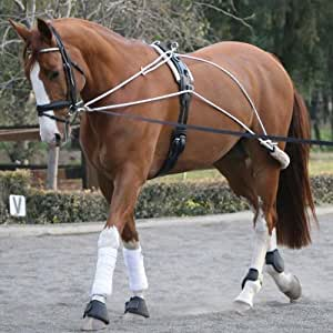 Equestrian Horse Riding Lunging Roller Schooling Training