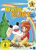 Hallo Kurt - Vol. 3, Episoden 43-63 [4 DVDs]