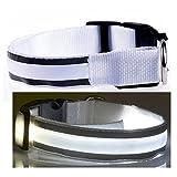 Q4Pets Blinklicht Hund Oder Katze Kragen. Wasserdichte Reflektierende LED-Sicherheits-Haustier-Krägen. (Kleines, Weiß)