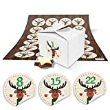 24Petites boîtes Mini Boîtes (8x 6,5x 5,5) pour calendrier de l'avent selber bricolage et numéros de remplissage + Chiffres Stickers Cerf vert rouge de 1à 24en tant que Idée de Cadeau de Noël