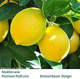 Zitronendünger Orangendünger 2kg im Eimer Langzeitdünger Premium Profi Line unser Klassiker für Profis, Mediterraner Zitronenbaum Dünger, Orangenbaum Dünger, Mediterrano für Mediterrane Pflanzen, für beste Ergebnisse, schnellen und kontinuierlicher Wuchs sowie satte Farben für eine gute Photosynthese, Profi Line für beste Ergebnisse, Organisch-Mineralisch-Ökologischer Dünger 2 kg im Eimer.Zitronen Dünger,Orangen Dünger,Zitrusdünger,Citrusdünger Keine Chemie, kein Gift !