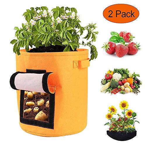 REDAPP 2 Stück Vliestomaten Kartoffeln Gemüse Wachstum Beutel Gartenpflanze Pflanzgefäß Topf Container 36 x 36cm Orange -