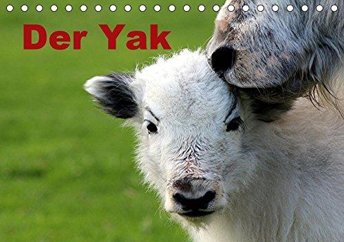 Der Yak (Tischkalender 2019 DIN A5 quer): Yaks sind liebevolle, soziale Tiere, anders als unsere Hausrinder (Monatskalender, 14 Seiten ) (CALVENDO Tiere) -
