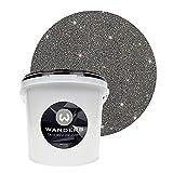 Wanders24 Pintura de brillo aspecto brillante (3 litros, Negro plata) pintura de pared de brillo, pintura de efecto, pintura de estructura