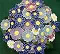 Blumenset 10 Keramikblumen Frühling von ROWE Deko - Du und dein Garten