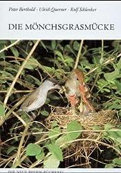 Die Mönchsgrasmücke. Sylvia atricapilla