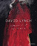 David Lynch - Someone is in My House