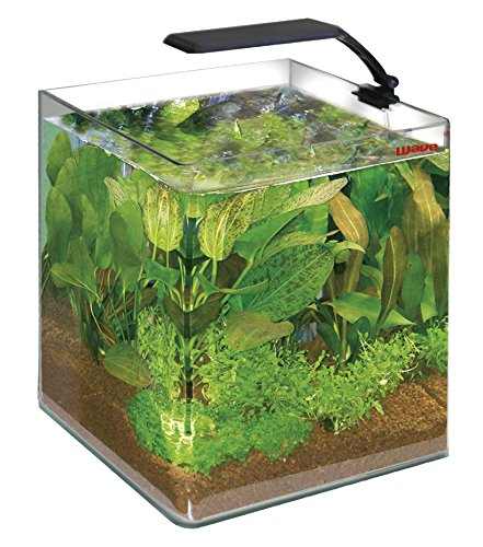 Wave Acquario Box Cubo 30 Orion