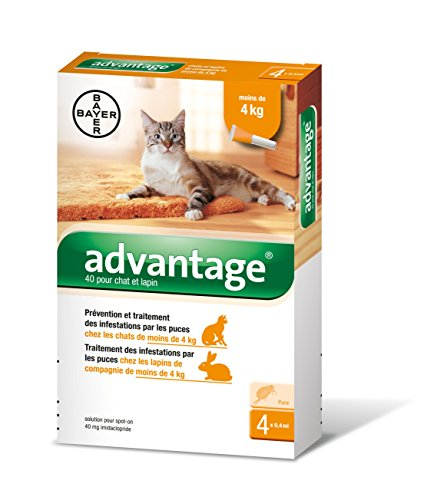 advantage-40-chat-lapin-0-4-kg-4-pipettes-antiparasitaires