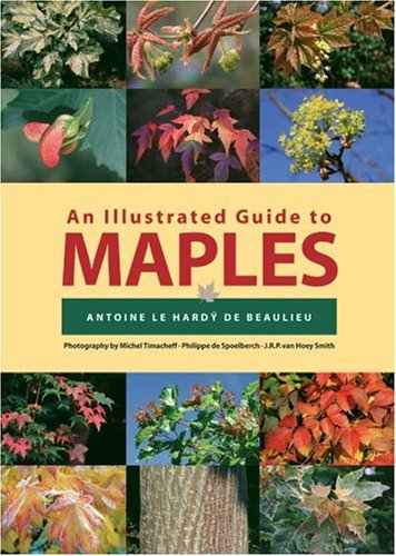 Illustrated Guide to Maples (Illustrated Guides) (Hardy Baum)