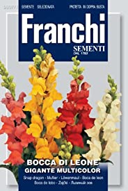 Franchi Flower Snapdragon Giant Mixed Seeds
