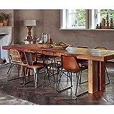 BRIX Esstisch Fiona TUA 260 x 100 cm Teakholz massiv Dinnertisch Tisch Esszimmertisch