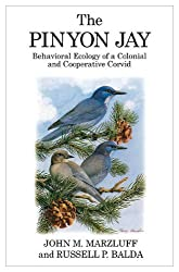The Pinyon Jay: Behavioral Ecology of a Colonial and Cooperative Corvid (Poyser Monographs)