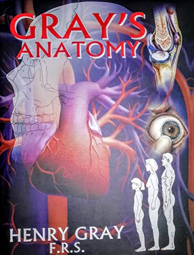 Gray\'s Anatomy - Buy Online from Engineering Books Shop