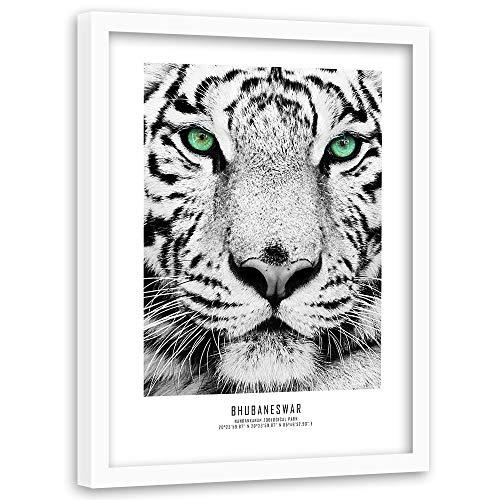 Feeby Poster mit Rahmen weißer Tiger Modern Art Tier Natur Katze Augen Grün 40x60 cm