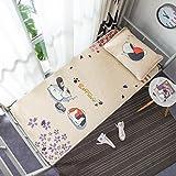 Sommer-Schlafmatte, klimatisierter Sitz Folding Student Dormitory Single Mat Kit (Farbe : Z101, größe : Mat 90 * 190cm Pillowcase)