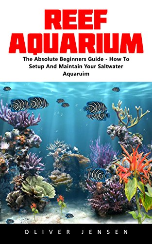 reef-aquarium-the-absolute-beginners-guide-how-to-setup-and-maintain-your-saltwater-aquarium