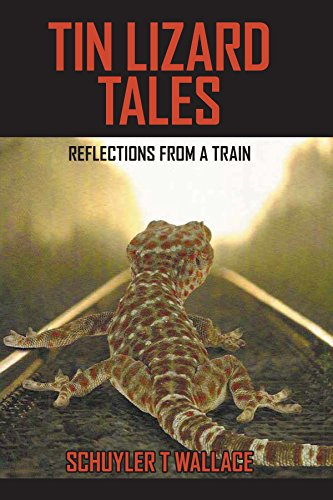 Tin Lizard Tales: Reflections from a Train (English Edition)
