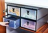 Vinteky® Kunststoff Faltbare Schuh Box Schuhschachtel Schuhboxen 10 Stück Schuhaufbewahrung - Einzelschuhbox ca.31 x 20 x 12cm