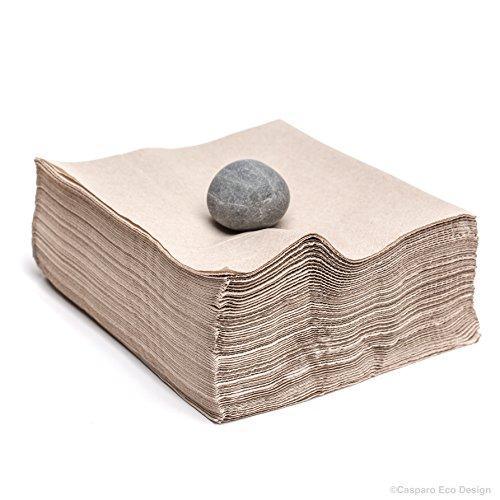 100 x hochwertige Papier-Servietten | umweltfreundlich | Papierfaser aus nachhaltiger Forstwirtschaft | 100% biologisch abbaubar | ohne Erdöl und Chemie | 33 x 33 cm 2-lagig 1/4 Falt (100 Papier Servietten)