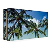 Premium Textil-Leinwand 90 cm x 60 cm quer Urlaubsstimmung | Wandbild, Bild auf Keilrahmen, Fertigbild auf echter Leinwand, Leinwanddruck: Traumhafte Palmen (CALVENDO Orte)