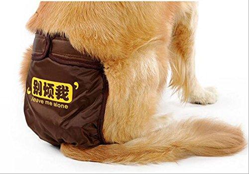 Glield Hunde Läufigkeitshose Hygienehose Unterhose Unterwäsche PTK01 (M (waist 48cm-62cm), coffee) - 3