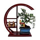 exotenherz Pflanzen, Zimmerbonsai im Bonsai-Rund-Regal mit Deko-Figur, grün, 30 x 30 x 52 cm, 113508022017