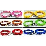 Dog Collar & Lead Leash Set Piggy & Monkey Puppy XS Small Nylon Terrier Scottish Pink Blue UK (Yellow) 3