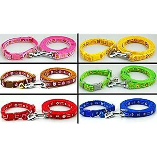 Dog Collar & Lead Leash Set Piggy & Monkey Puppy XS Small Nylon Terrier Scottish Pink Blue UK (Yellow) 10