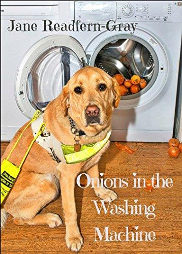 onions-in-the-washing-machine